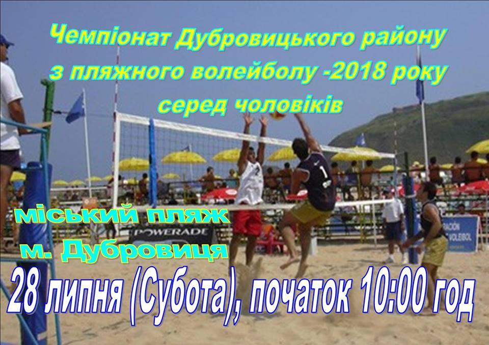 anons-bv-dubrovitsya-rn-2018.jpg (109.46 Kb)